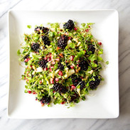 micro_greens_blackberry_salad_a_house_in
