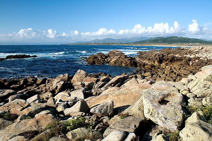 Mar y Rocas, 2008