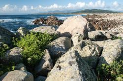 Rocas, 2008