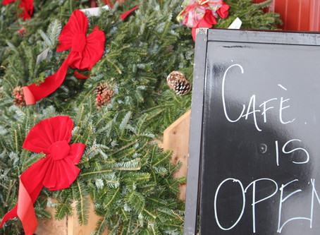 Hidden in Plain Sight – The Seasonal Pine Tree Café