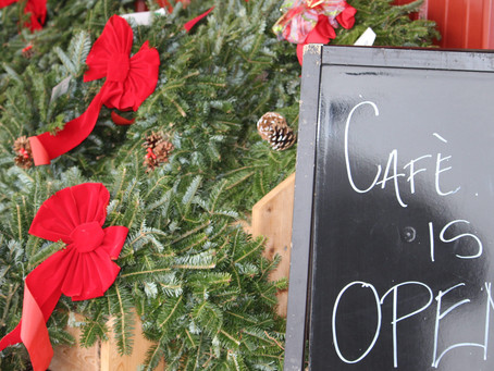 Hidden in Plain Sight – The Seasonal Pine Tree Café