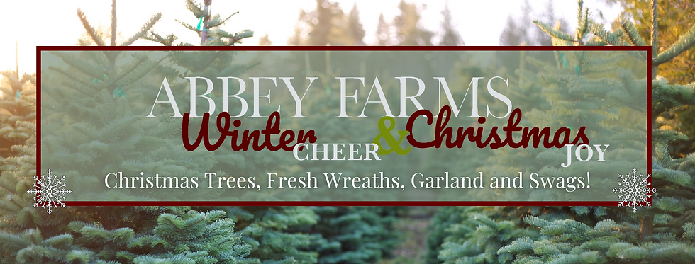 Winter Cheer!fbheader (1).png