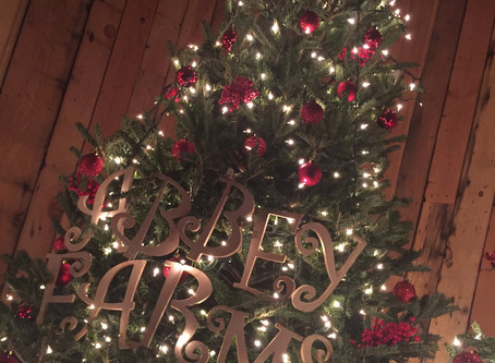 13 Tips for Choosing and Caring for Your Abbey Farms Christmas Tree