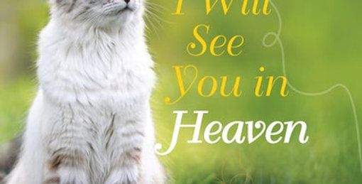 I Will See You in Heaven: Cat