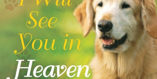 I Will See You in Heaven: Dog