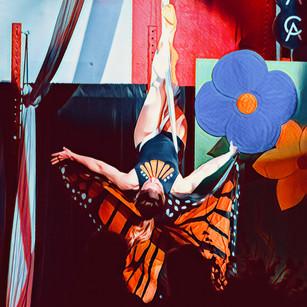 ButterflyKatie