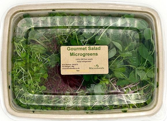 Gourmet Salad Microgreens
