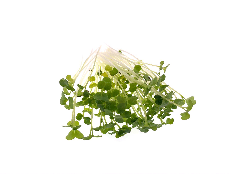 Broccoli original