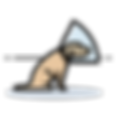 1620477-512 (1).png