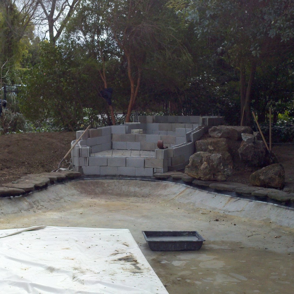Before photo of pond