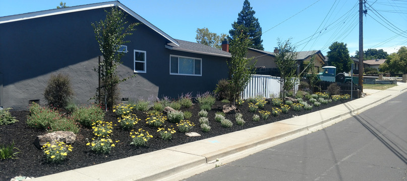 Curb side appeal