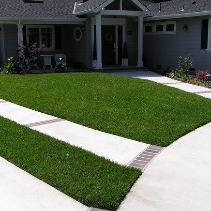After photo of front lawn