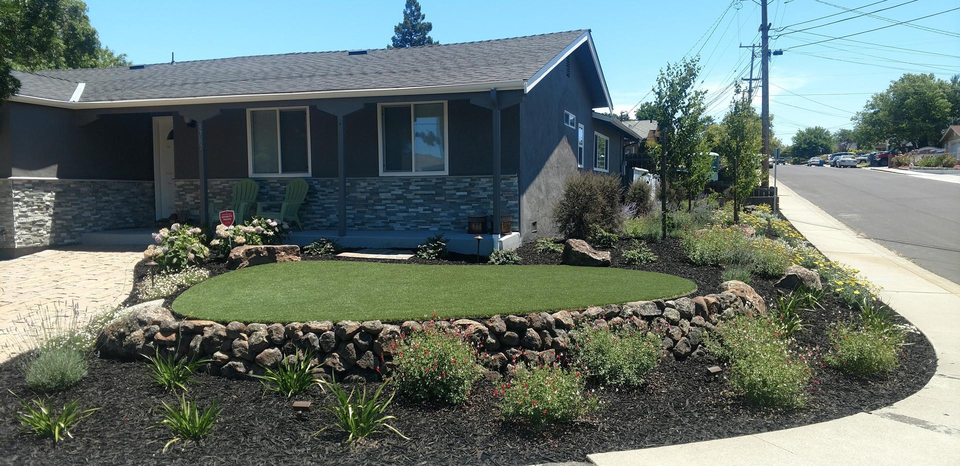 Quality garden lawn