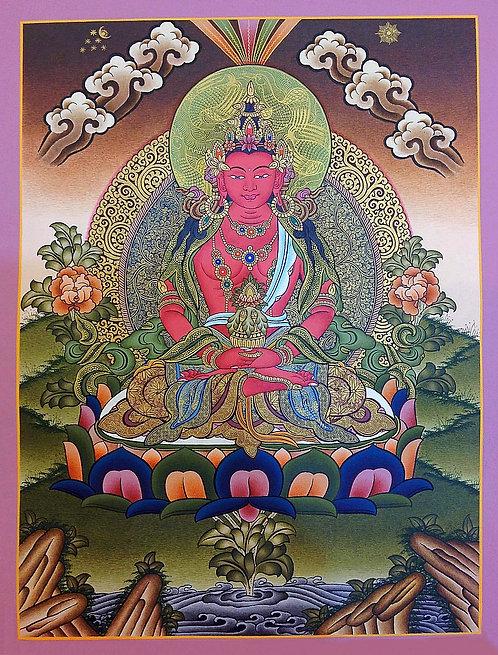 Aparmita Buddha Thangka