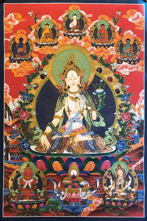 White Tara Thangka - Lama Painted