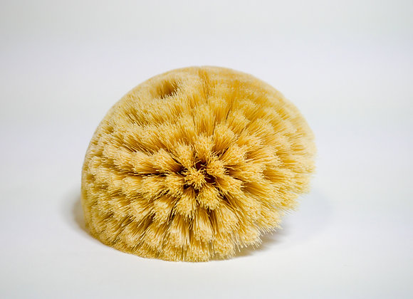 Dome Buffing Brush