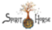 S-H logo.png