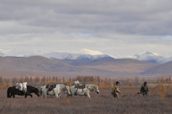 Horse-breeders Oymyakon'ya