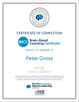 Peter Gross National Leadership Institute Brain-Based Coaching Certificate