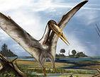 Pterosaure.jpg