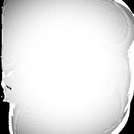 White%2520Tree%2520Transparent%2520Backg