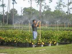 Testing Irrigation Heads at nursery