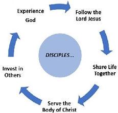 5 Step Discipleship Process_no plants.jpg