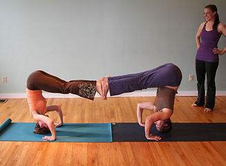 Continuing Education Yoga Teacher Traiing Fort Collins