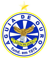 AGUIA DE OURO - LOGO ESTRELA.png