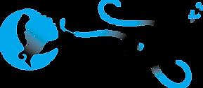 Logo_Horiz_BPMS_ProcCyan.png