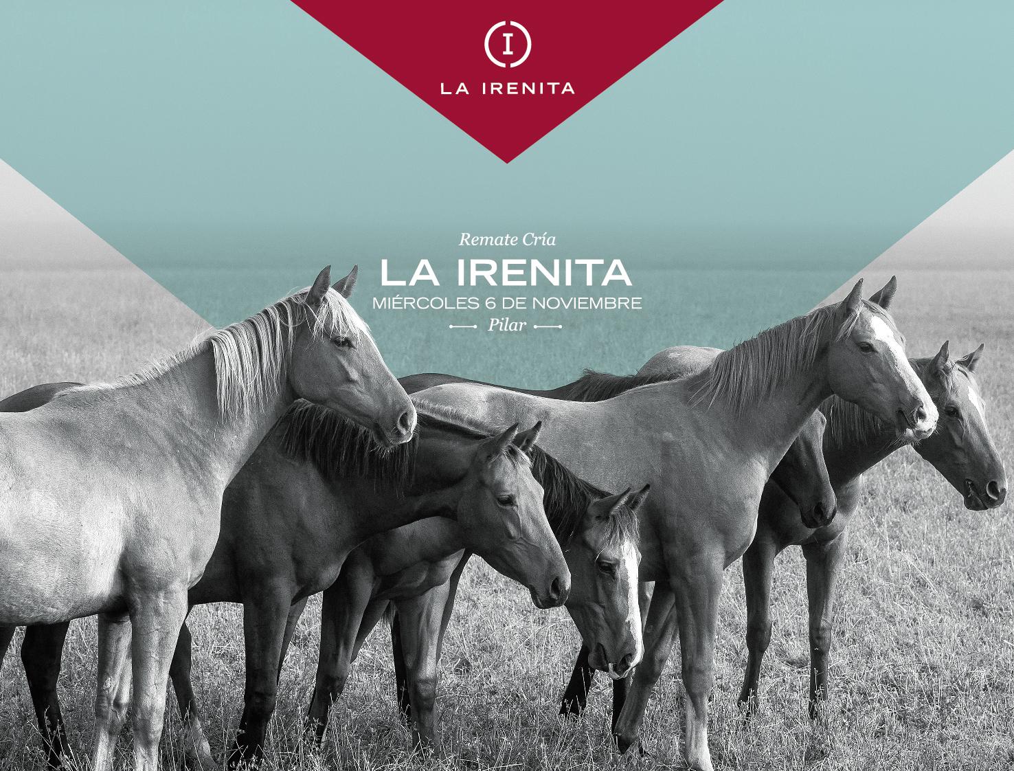 La Irenita