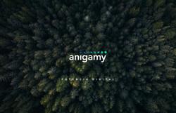 Anigamy