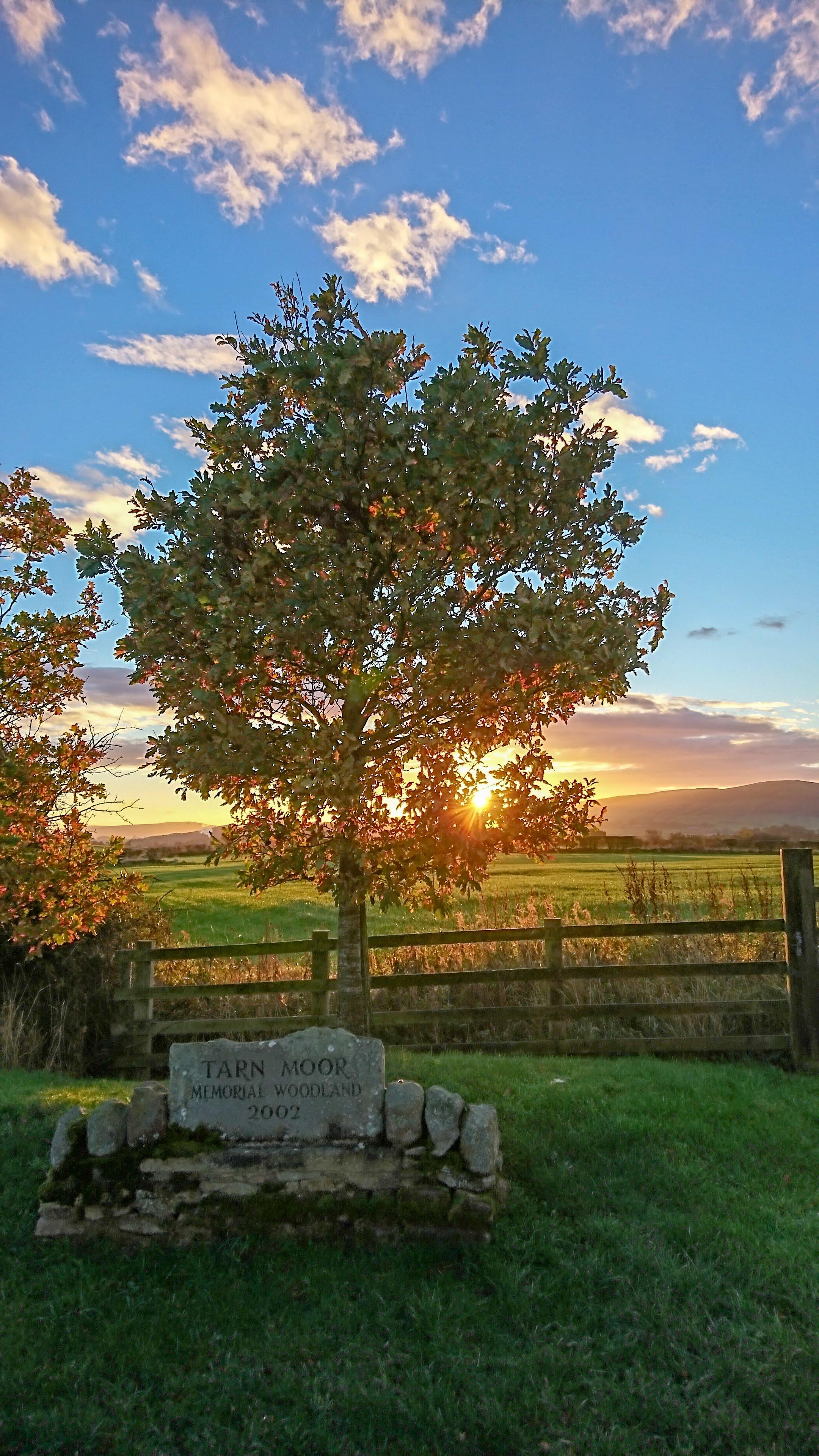 Sun Rise At Tarn Moor