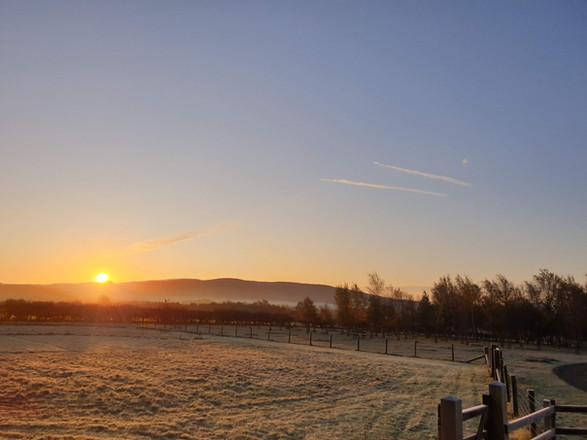 A new day at Tarn Moor Memorial Woodland