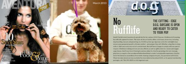 Aventura Magazine DOG