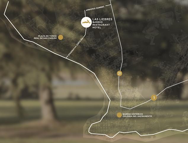 mapa las liebres.png