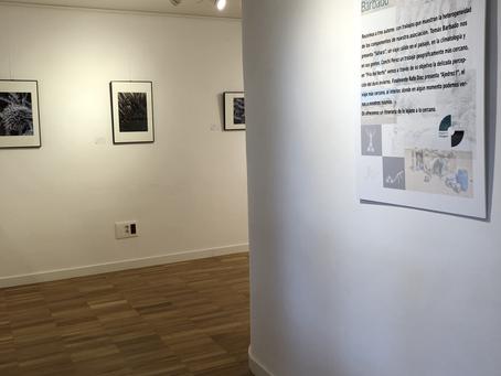 Exposición de tres socios