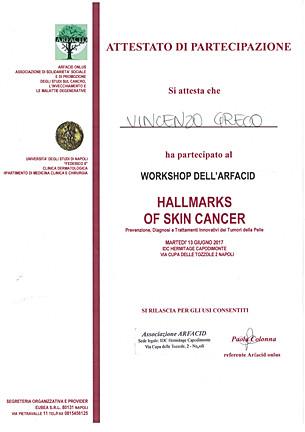 18 2017 6 - workshop arfacid hallmarks o