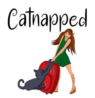 Catnapped no author.jpg