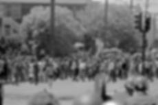 scan0008small900pixel.tif