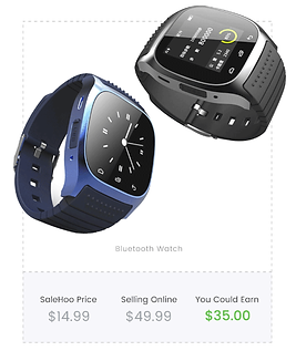 salewhoo-wholesale-watches.png