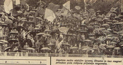 north stand 1982 maximir