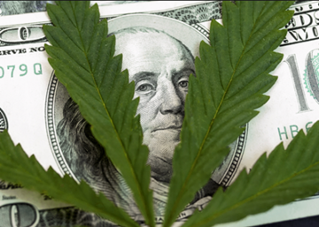 Mnuchin Offers Some Hints At How Treasury Will Handle Banking Of Pot Biz