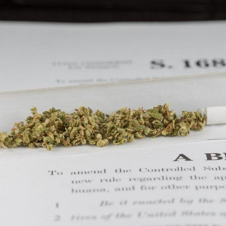 Senate Committee Slams Marijuana's Federal Classification, Saying Schedule I Blocks Research