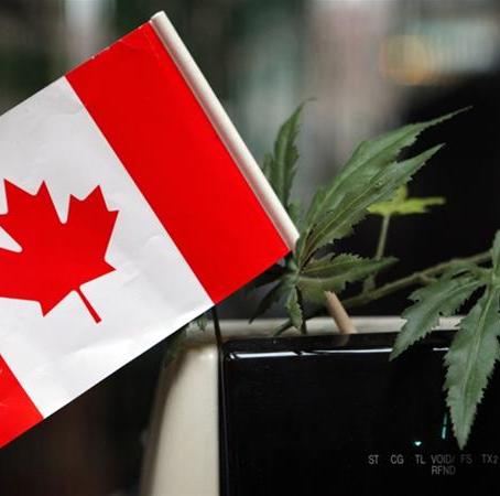 Canada's Senate approves cannabis bill with amendments
