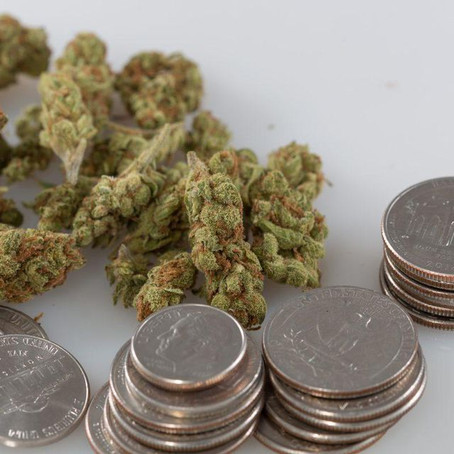 Feds May Remove Marijuana Banking Protections, Treasury Department Says