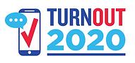 Turnout 2020