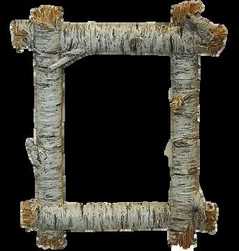 birch framce.png