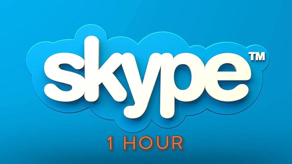Private 1 Hour Skype lesson