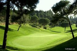 Chaparral golf